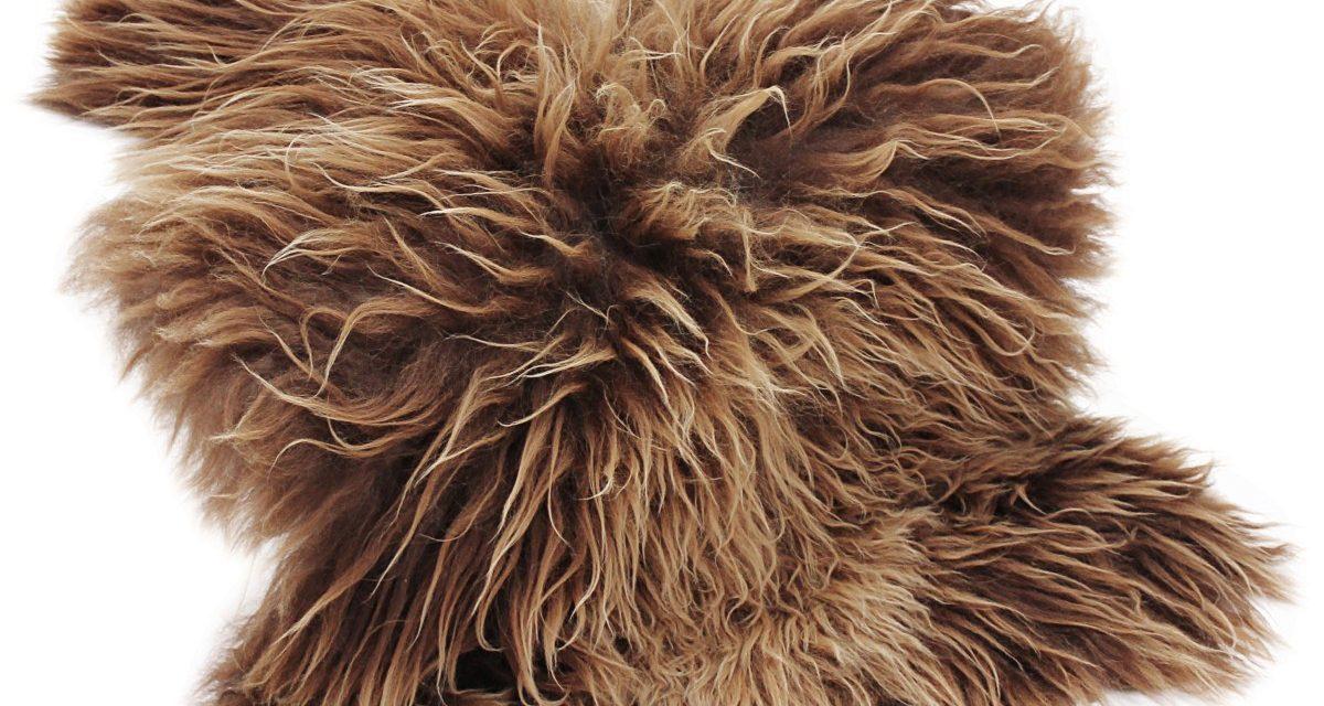 CANETT Pels skind – Brun