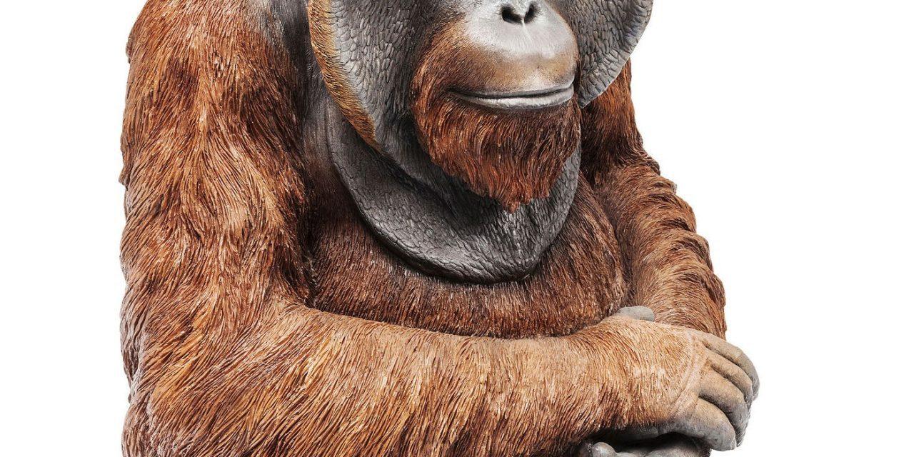 Dekoration Figur Monkey Orangutan Mellem
