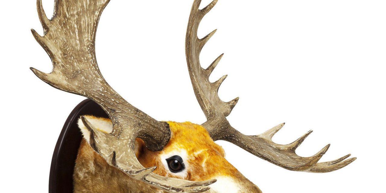 Dekoration Antler Elk Fur