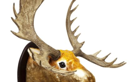Dekoration Antler Elk Fur