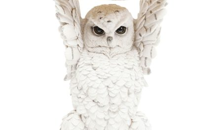 KARE DESIGN sidebord Animal Owl Ø35 cm