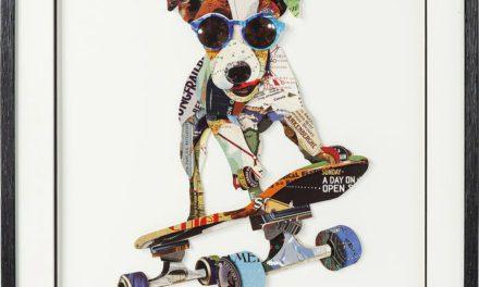KARE DESIGN Billede, Frame Art Skater Dog 65 x 65 cm