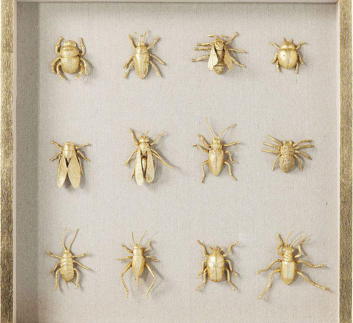 KARE DESIGN Vægdekoration, Frame Bugs 60 x 60 cm