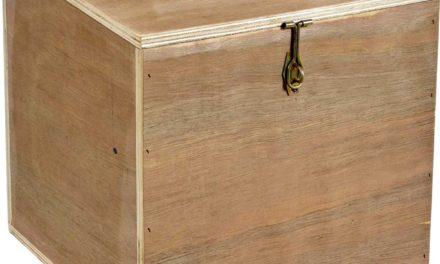 TRADEMARK LIVING Kasse med låg fremstillet i genbrugstræ