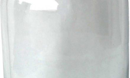 TRADEMARK LIVING Fin enkel glasvase – large