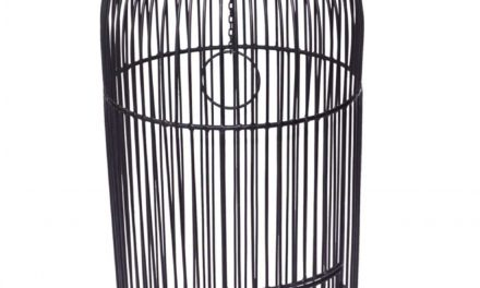 TRADEMARK LIVING Stort fuglebur i jern – sort