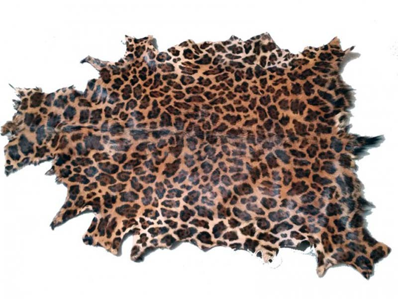 Gedeskind, Leopard print.