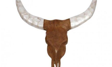 Buffalo hoved, teak træ, hvide horn