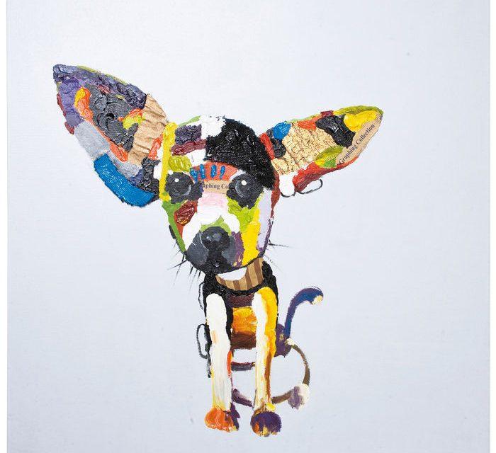 KARE DESIGN Oliemaleri, Chihuahua 100×100