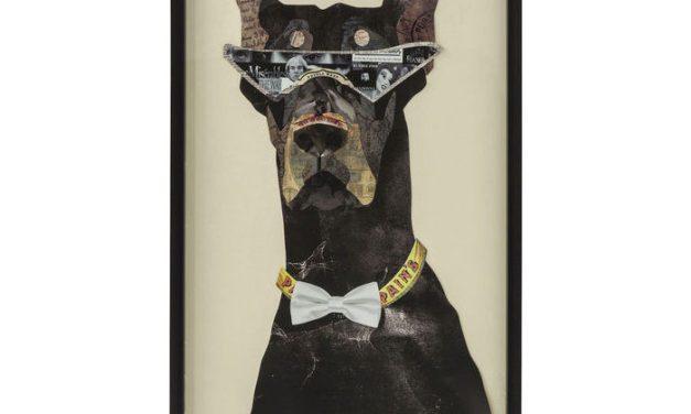 KARE DESIGN Billede, Frame Art Cool Dog 121x61cm