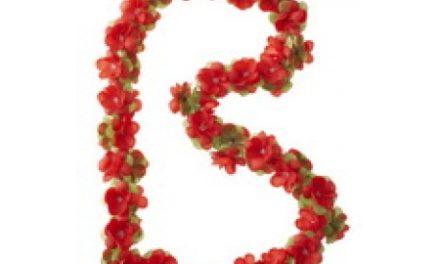 Blomsterkrans Rød plast til cykelkurv