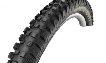 Schwalbe Magic Mary Downhill Foldedæk – 26×2,35